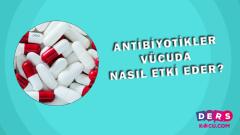 Antibiyotikler Vücuda Nasıl Etki Eder?