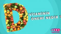 D Vitaminin Önemi Nedir ?