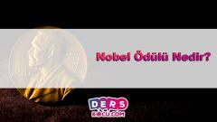 Nobel Ödülü Nedir?