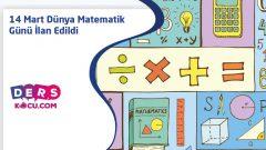 14 Mart Dünya Matematik Günü İlan Edildi